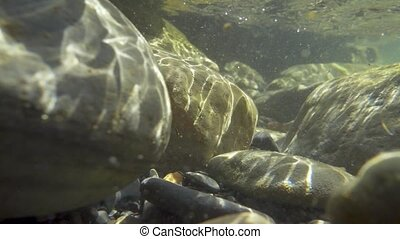 Slow motion sunlight under the water on the rocks