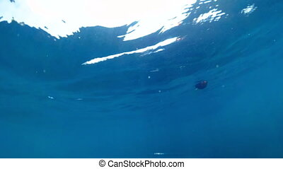 Slow motion underwater video of waving sea and life buoys at...