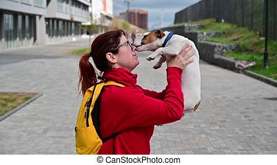 Slow motion video funny dog jack russell terrier licks the face of its owner