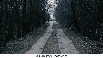 Slow moving along half-destroyed road covere with concrete...