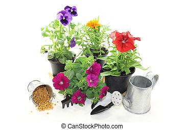 slow-release Fertilizer with flowers and garden tools on a...