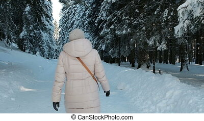 Slow shooting from back woman in winter pine forest with snow