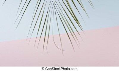 slowly, медленный, дерево, розовый, background., гладкий; ...