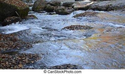 Slowly brook flowing among a fallen leaves on rocks
