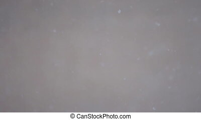 Slowly Falling snow on a blurred background