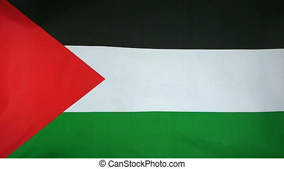 Slowmotion Flag State of Palestine - Slowmotion of a real...