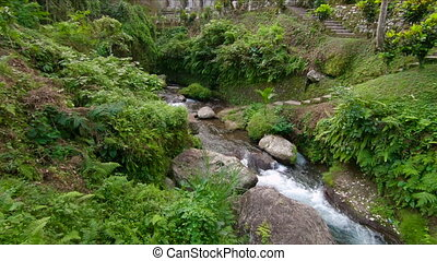 Slowmotion shot of a small tropical river at a park around...