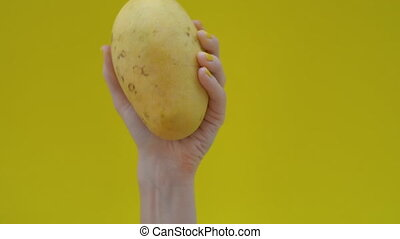 Slowmotion shot of a woman with yellow colored nails holding a mango on a yellow background