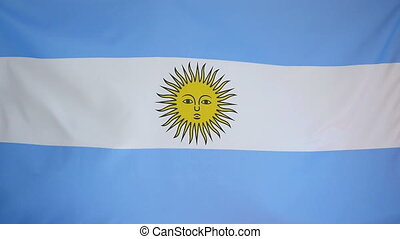 Slowmotion textile Flag Argentina - Slowmotion of a real...