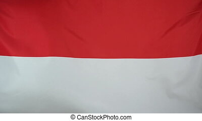 Slowmotion textile Flag Indonesia - Slowmotion of a real...