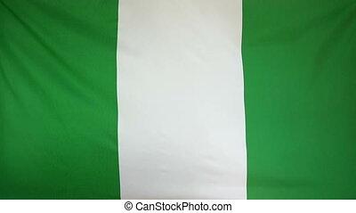 Slowmotion textile Flag Nigeria