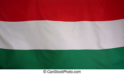 Slowmotion textile Flag of Hungary - Slowmotion of a real...