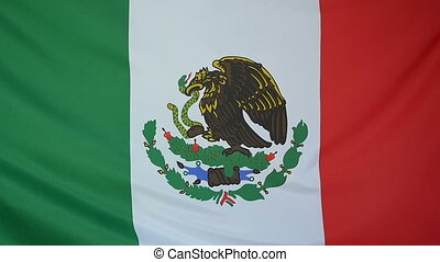 Slowmotion textile Flag of Mexico - Slowmotion of a real...
