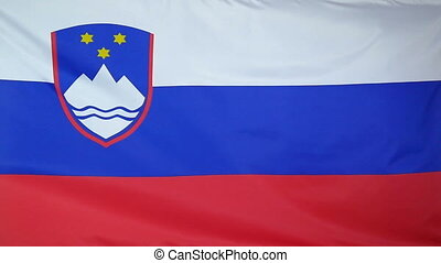 Slowmotion textile Flag of Slovenia - Slowmotion of a real ...