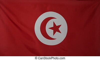 Slowmotion textile Flag of Tunisia - Slowmotion of a real...