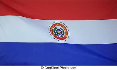 Slowmotion textile Flag Paraguay