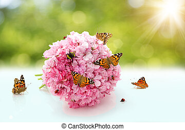 slunéčko sedmitečné, kytice, bumblebee, insects., včela, sun., pochlebnický, svatba, květiny, motýl