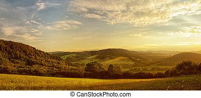 slunit se, krajina, zlatý, sázení, nad, kopcovitý, planout, západ slunce