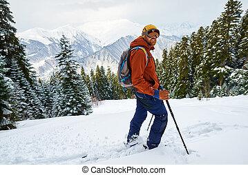 sluttning, står, skog, drev, man, skidåkare
