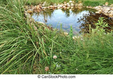 Small Artificial Decorative Pond On The Backyard In Summer -...