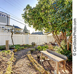 Small backyard garden with wooden bench