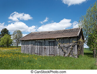 Small barn in a blooming meadow