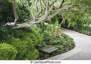 small bench in garden