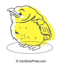 Small Bird Drawing