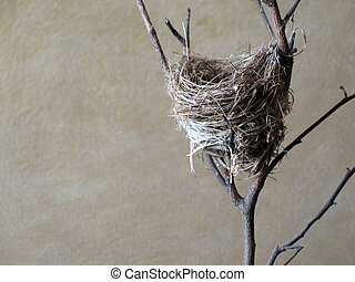 Close-up of a small bird's nest on a branch, against a textured background.