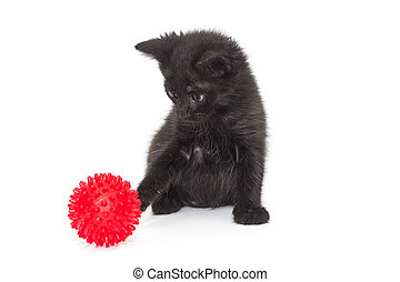 Small black kitten playing with a red ball