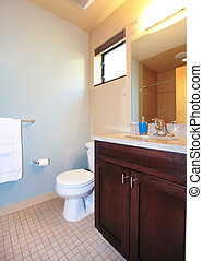 Small blue bathroom with wood cabinet.