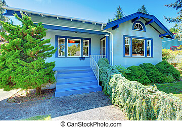 Small blue old cute house