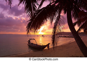 Small boat under the palm trees on tropical beach at sunset