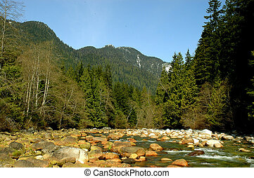 Small boulders on the Seymour River