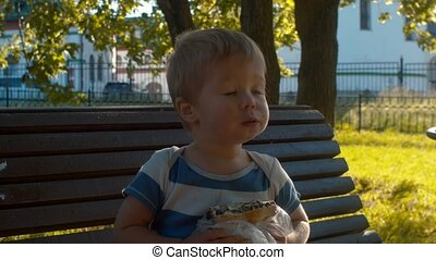 Small boy sitting on a bench and eating bun - Little kid...