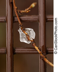 Small branch with icicles on a bench