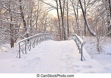 Small bridge in winter park.