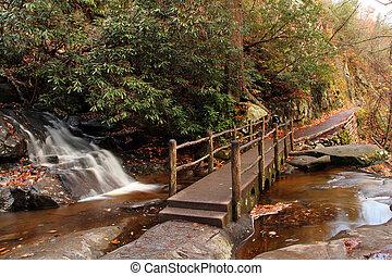 Small Bridge over Laurel Falls