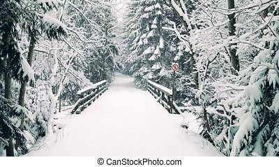 Small bridge with no entry sign in falling snow - Small...