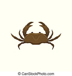 Small brown crab with big claws. Marine animal. Sea creature. Flat vector element for mobile game or cafe menu