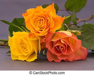 Small bunch of orange and yellow colored roses