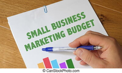 Small Business Marketing Budget Report - Small Business...