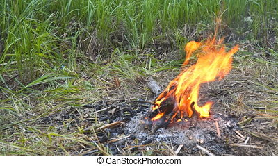 Small camp fire - A small campfire burns