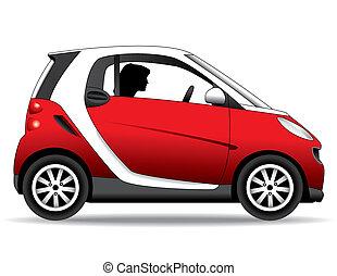 small car - a small, economical, environmentally safe car