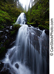 Fairy Falls in Columbia Gorge Oregon