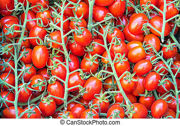 Small cherry tomatoes for sale at a market