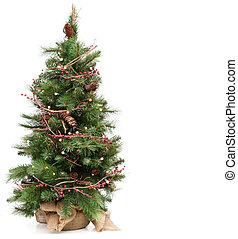 Christmas tree - Small Christmas tree, isolated on white.
