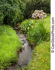 Small creek, green meadow Normandy France in summer