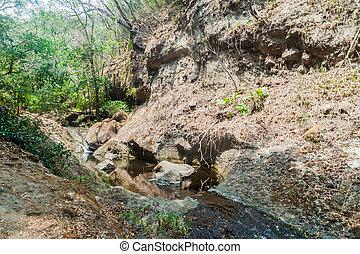 Small creek in National Park El Imposible, El Salvad