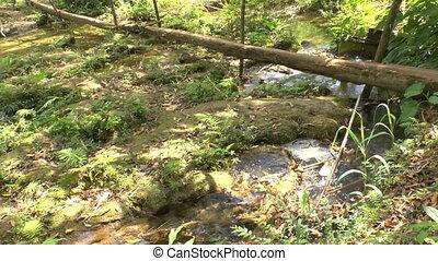 Small creek in Topes de Collantes,